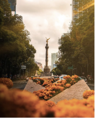 The Angel of Independence, most commonly known by the shortened name El Ángel and officially known as Monumento a la Independencia